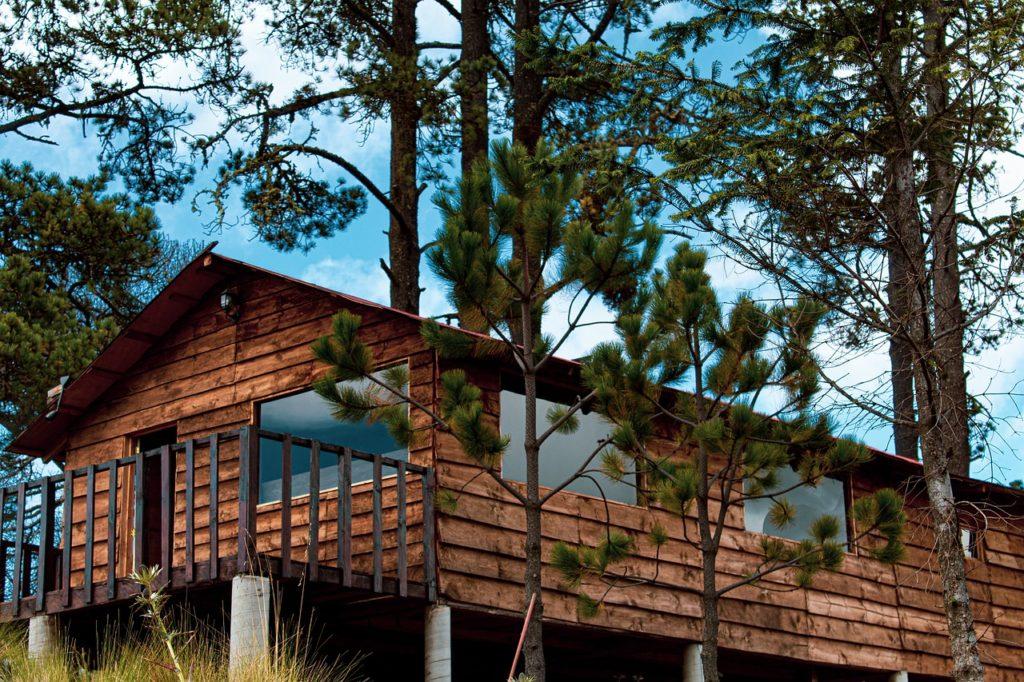 Cabin Forest Lodge Lodging Cottage  - jkdberna / Pixabay